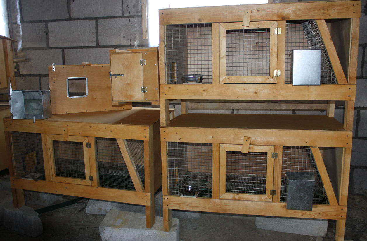 Клетки для кроликов своими руками в 3 яруса фото размеры